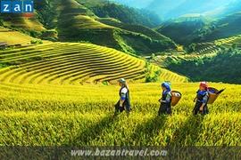 Tour Tết Hà Nội - Hạ Long - Chùa Bái Đính - Sapa (6 Ngày 5 Đêm)