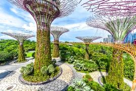 Tour Singapore (Garden By The Bay - Sentosa)