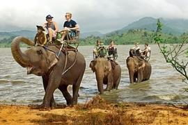 Tour Buôn Ma Thuột - Hồ Lak - Bản Đôn