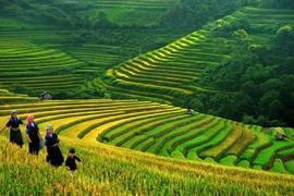 Tour Sài Gòn – Hà Nội – Sapa – Bái Đính