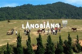 Tour Bắc Giang Đi Nha Trang - Đà Lạt