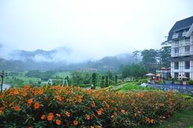 Tour Quảng Ninh Đi Nha Trang - Đà Lạt