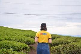 Tour Tuyên Quang Đi Nha Trang - Đà Lạt