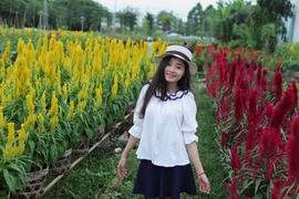 Tour Hà Nam Đi Tp.Hồ Chí Minh - Đồng Tháp