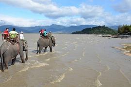 Tour Tây Nguyên - Quảng Bình - Miền Trung - Nha Trang
