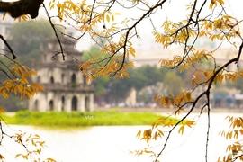 Tour Hà Nội - Ninh Bình - Quảng Ninh - Sa Pa