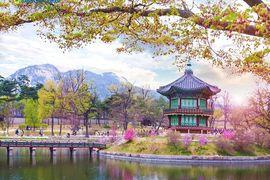 Tour Seoul - Everland - Nami 5N4Đ khám phá xứ sở Kim Chi Hàn Quốc