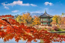 Tour Hàn Quốc 5 ngày 4 đêm Seoul - Nami - Everland - Trượt tuyết