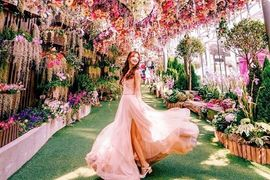 Tour Singapore - City Hall - Công viên sư tử đá