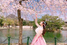 Tour du lịch Hàn Quốc Seoul - Everland - Nami 4 ngày 4 đêm