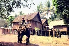 Tour Buôn Mê Thuột - thác Draynur - Buôn Đôn Tết Nguyên Đán