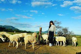 Tour Tây Ninh Đi Vũng Tàu