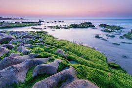 Tour du lịch Phan Thiết Mũi Né biển Cổ Thạch
