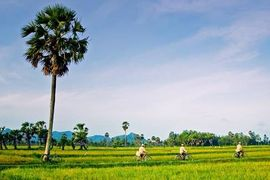 Tour du lịch Hưng Yên đi Châu Đốc
