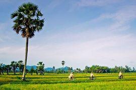 Tour du lịch Tây Ninh đi Châu Đốc