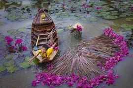 Tour du lịch Thanh Hóa đi miền Tây