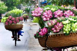 Tour Hà Nội - Ninh Bình - Hạ Long Tết Dương lịch 2019