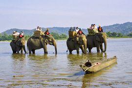Tour Buôn Mê Thuột - Đà Lạt dành cho khách đoàn