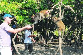 Tour Hà Nội đi Nha Trang- Đảo Khỉ khách đoàn
