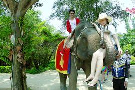 Tour Nha Trang - Suối Hoa Lan khách đoàn