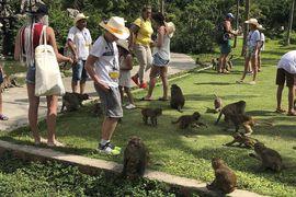 Tour Cần Thơ đi Nha Trang Đảo Khỉ bằng máy bay