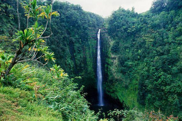 thac-nuoc-o-cong-vien-akaka-falls-state