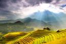 Cẩm nang địa điểm du lịch tết Nguyên Đán