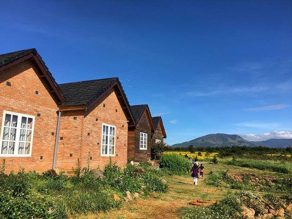 da-lat-mikl-farm-bazan-travel