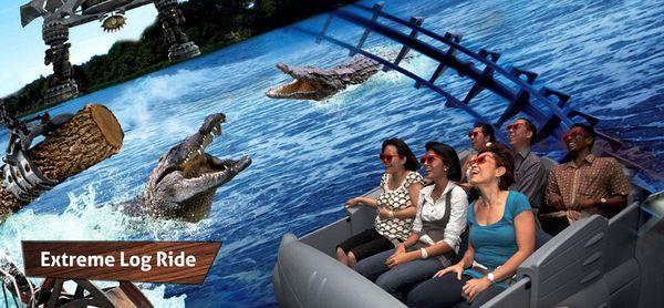 banner-extreme-log-ride