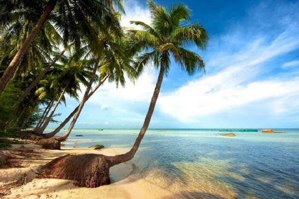bai-sao-phu-quoc-bazan-travel