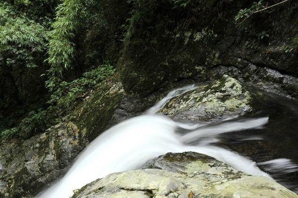 mang-nuoc-khong-lo-trong-rung-bazan-travel