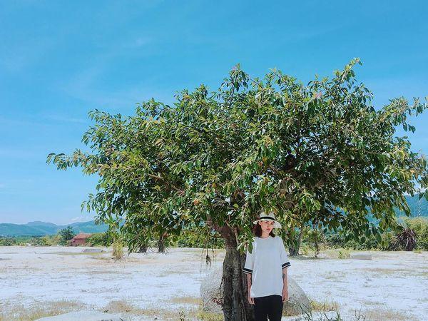 dubai-viet-nam-checkin-bazan-travel