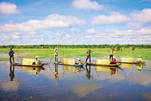 Top 9 khu du lịch sinh thái hấp dẫn du khách nhất Cần Thơ