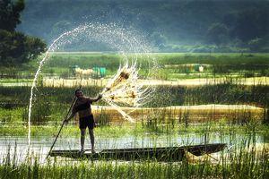 Top 13 khu du lịch thành phố Cần Thơ không thể không đến