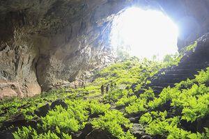 Quảng Bình mở tour tham quan hang Pygmy cực thú vị