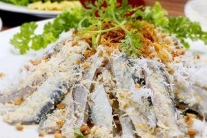 Gỏi cá trích Phú Quốc, sức hút lạ kì