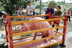 Lễ hội Đình Cẩm Hải Quảng Ninh