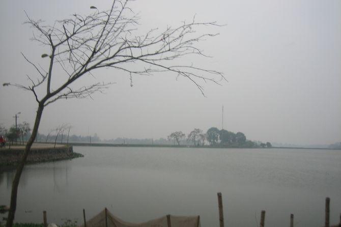 dam-rung-vinh-phuc