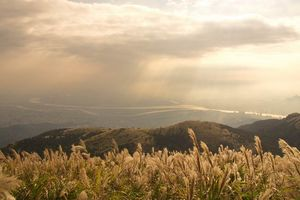 Vẻ đẹp núi Yangming ở Đài Loan