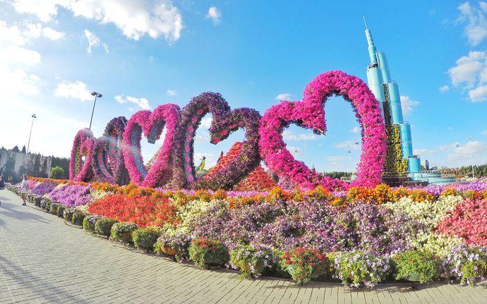 dubai-miracle-garden-hearts-miracle0717