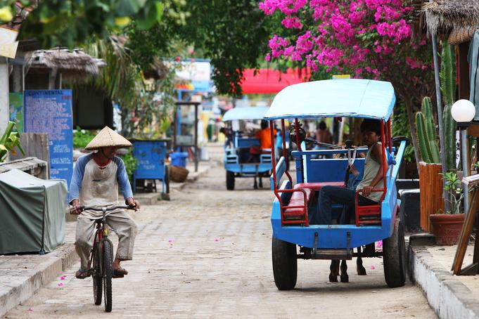 cidomo-horse-drawn-cart