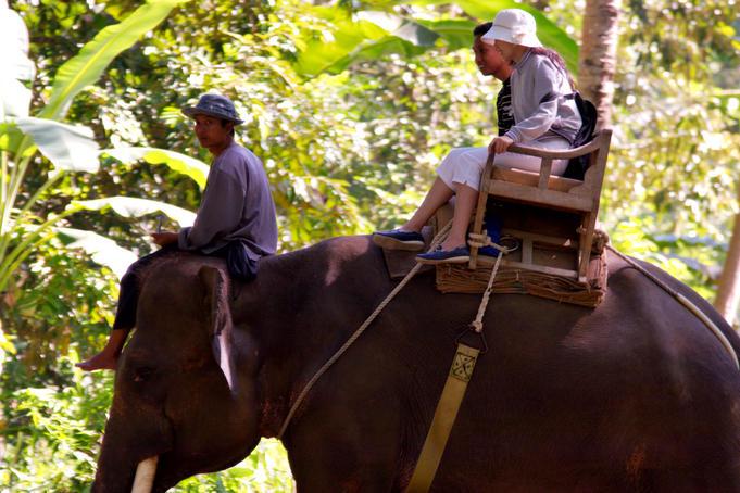 elephant-ride-at-elephant-safari-park
