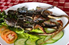 dong-dat-nuong-o-phan-thiet