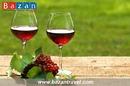 Nước Ý – Xứ sở của rượu vang trứ danh thế giới