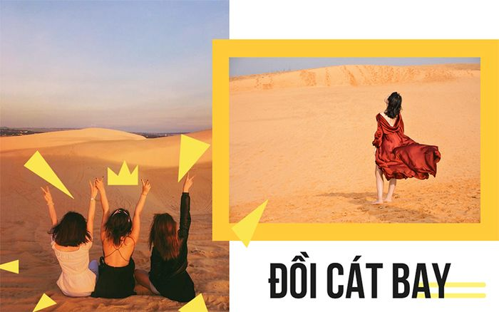 doi-cat-bay