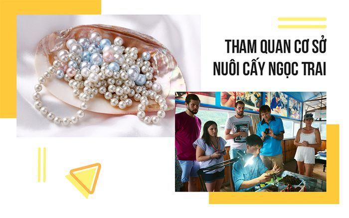 tour-phu-quoc-don-tai-san-bay-3-ngay-2-dem-co-so-nuoi-cay-ngoc-trai