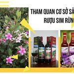 tour-phu-quoc-don-tai-san-bay-3-ngay-2-dem-co-so-san-xuat-rou-sim