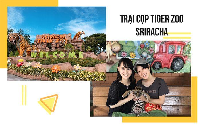 tour-thai-lan-bang-kok-pattaya-1