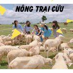 tour-team-buliding-phan-thiet-lagi