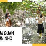 tour-ninh-chu-vinh-hy-khach-doan-2